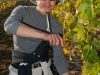 harvest-201024